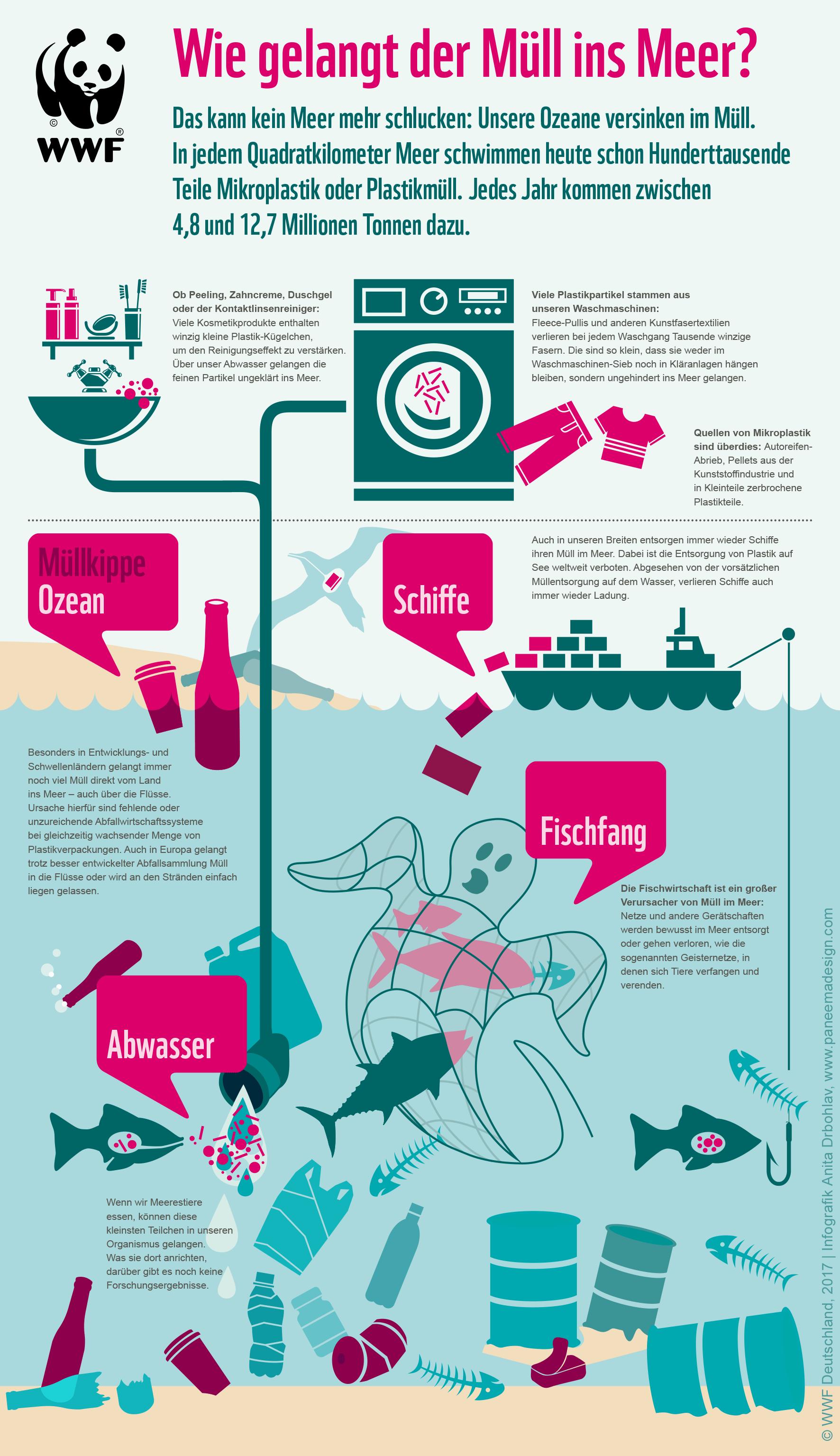 Wie der Müll ins Meer kommt